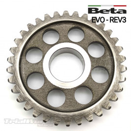 Beta EVO and REV idle gear...