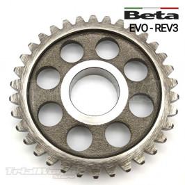 Piñon de arranque Beta EVO y Beta REV3