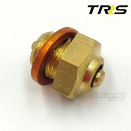 Válvula expansión radiador TRRS