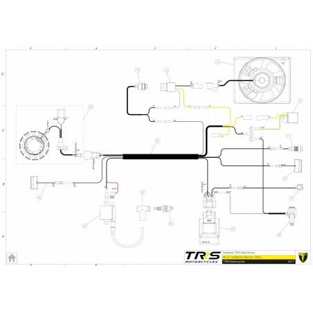 Regulador de corriente Trial Leonelli A/C 12 voltios