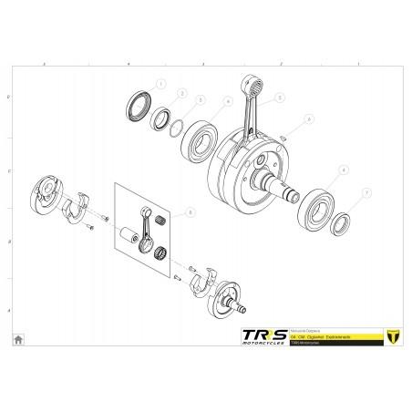 Rodamiento cigueñal SKF 6206 TRRS RR y GOLD