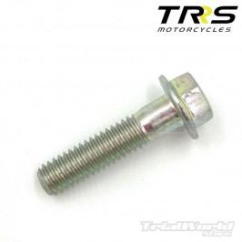Tornillo culata TRRS M6x25