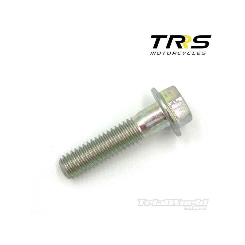 Tornillo DIN 6921 M6x25 culata TRRS