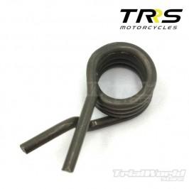 Shift selector shaft spring TRRS