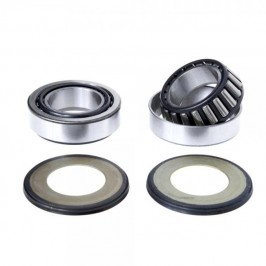 Montesa 4RT Steering Bearing Kit