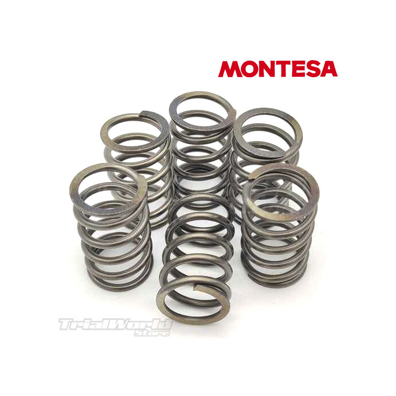Kit completo muelles embrague Montesa Cota 4RT